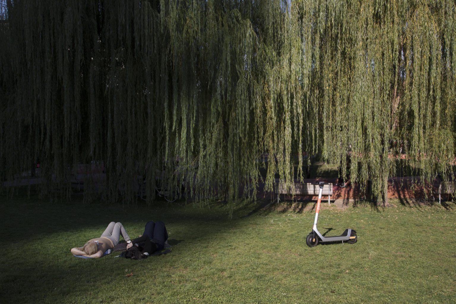 parco-biblioteca-degli-alberi-milanopark-tree-library-milan