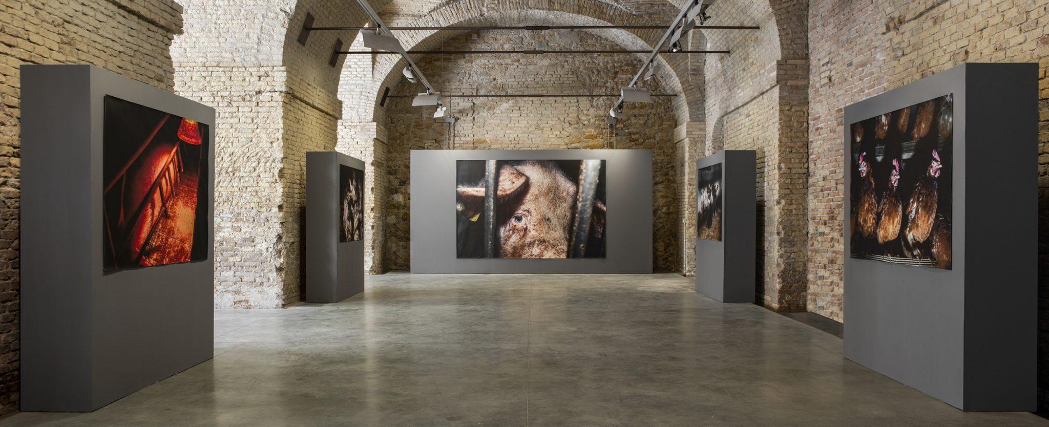 """The exhibition """"Blue"""" at the Mole Vanvitelliana. Ancona, Italy, 2020"""