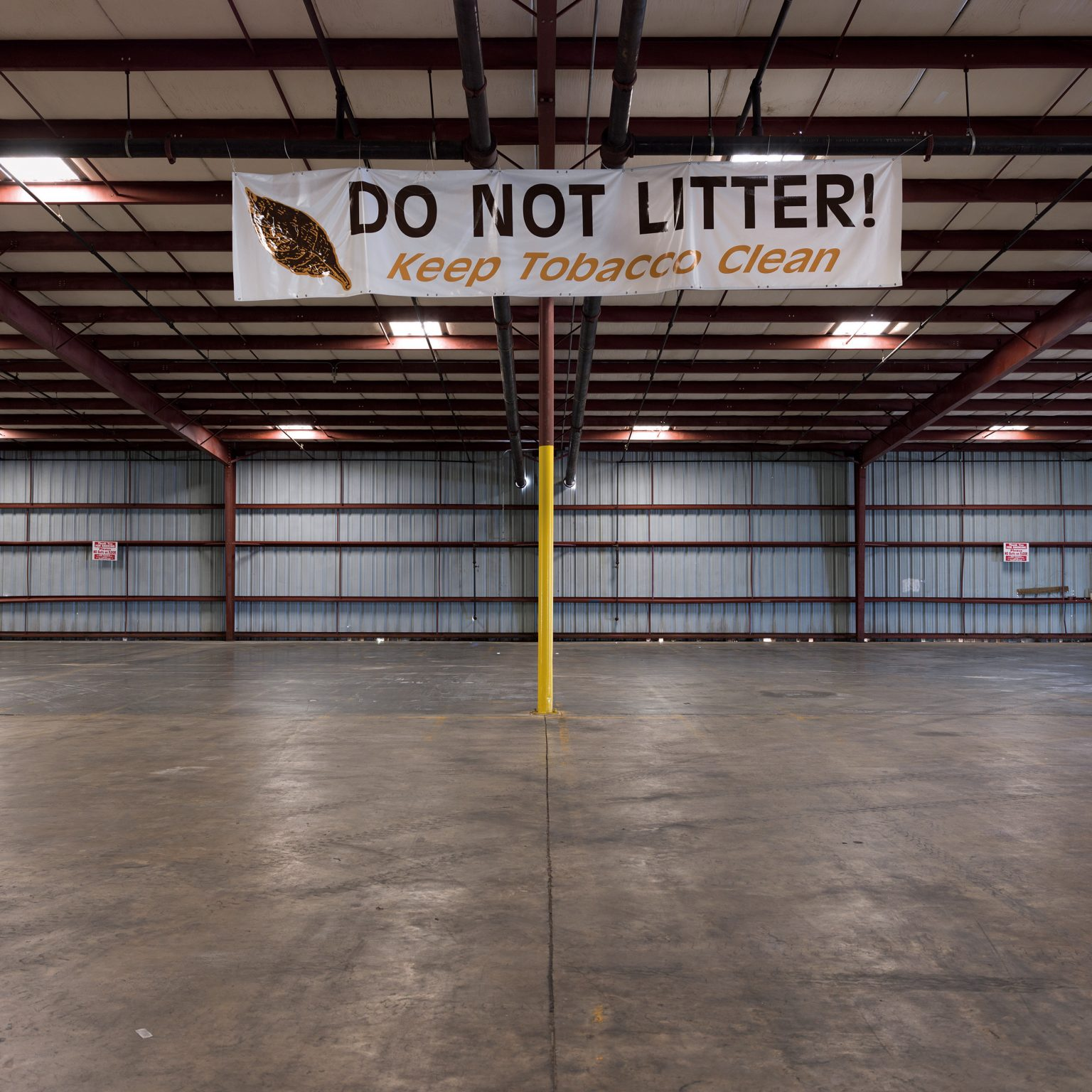 """Wilson, NC, USA. The preparation of a new tobacco auction warehouse in Wilson. In 2000, with the tobacco buyout, farmers shifted from the quota system to direct contracts with cigarette companies or tobacco dealers. However, in 2007-2008, as prices for tobacco decreased caused by growing competition with Asian producers, farmers started looking for other ways to sell their tobacco, and a few auction plans opened again. In 2013, in Wilson only, two actions plans are operating. Mostly, they buy """"bad tobacco"""", which Philip Morris and other major players do not want to purchase, but which is ideal for small, cheap cigarette companies. Farmers also like the direct contact with the owners, and their prices are good, about 2 USD per pound, paying directly on the spot."""