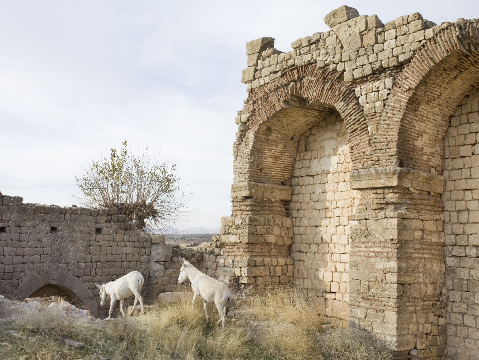 Ruins of an abandoned church in Hah, a Christian village on the Tur Abdin plateau.
