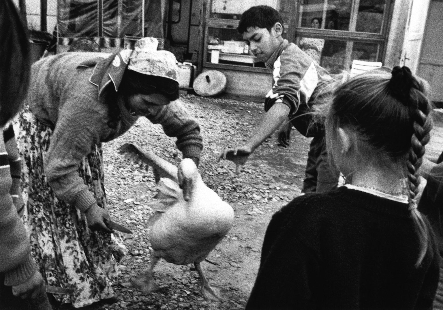 """Florence , 1993 - Nomads'camp -  the killing of a goose        ><  Firenze , 1993 - Campo nomadi - Uccisione di un' oca<p><span style=""""color: #ff0000""""><strong>*** SPECIAL   FEE   APPLIES ***</strong></span></p>"""
