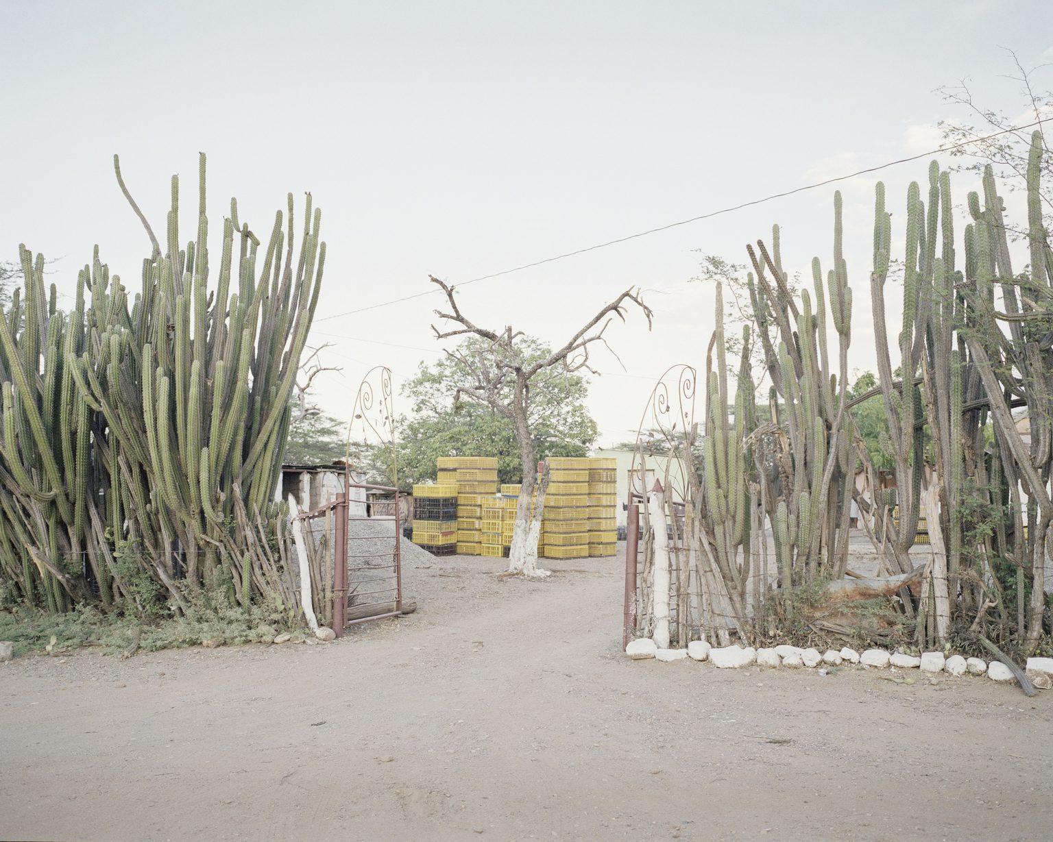The entrance of a farmer house in Carora.