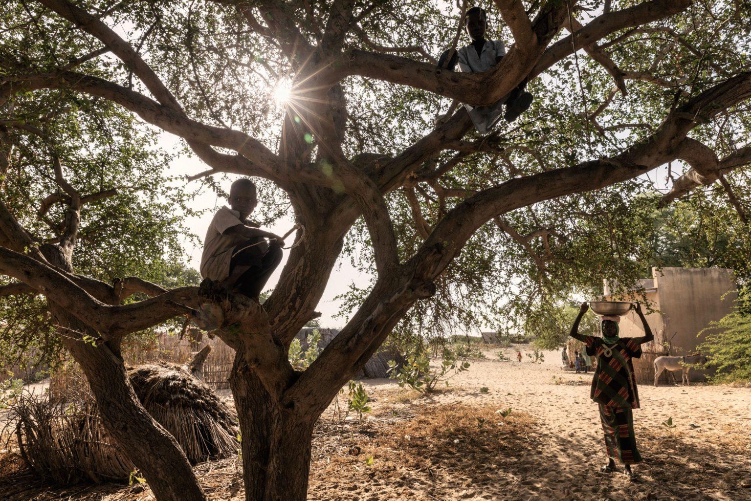 """Africa, Chad, Melea, October 2018 - Melea is a small village in the ?Lac Region? of Chad. The humanitarian emergency across the Lake Chad basin is one of the world?s most severe. This year, around 10.7 million people need relief assistance to survive. >< Africa, Ciad, Melea, Ottobre 2018 - Melea è un piccolo villaggio nella """"Lac Region"""" del Ciad. L'emergenza umanitaria lungo il bacino del Lago Ciad è una delle più gravi nel mondo. Quest'anno, circa 10.7 milioni di persone hanno bisogno di assistenza per sopravvivere. *** SPECIAL   FEE   APPLIES *** *** Local Caption *** 01362900"""