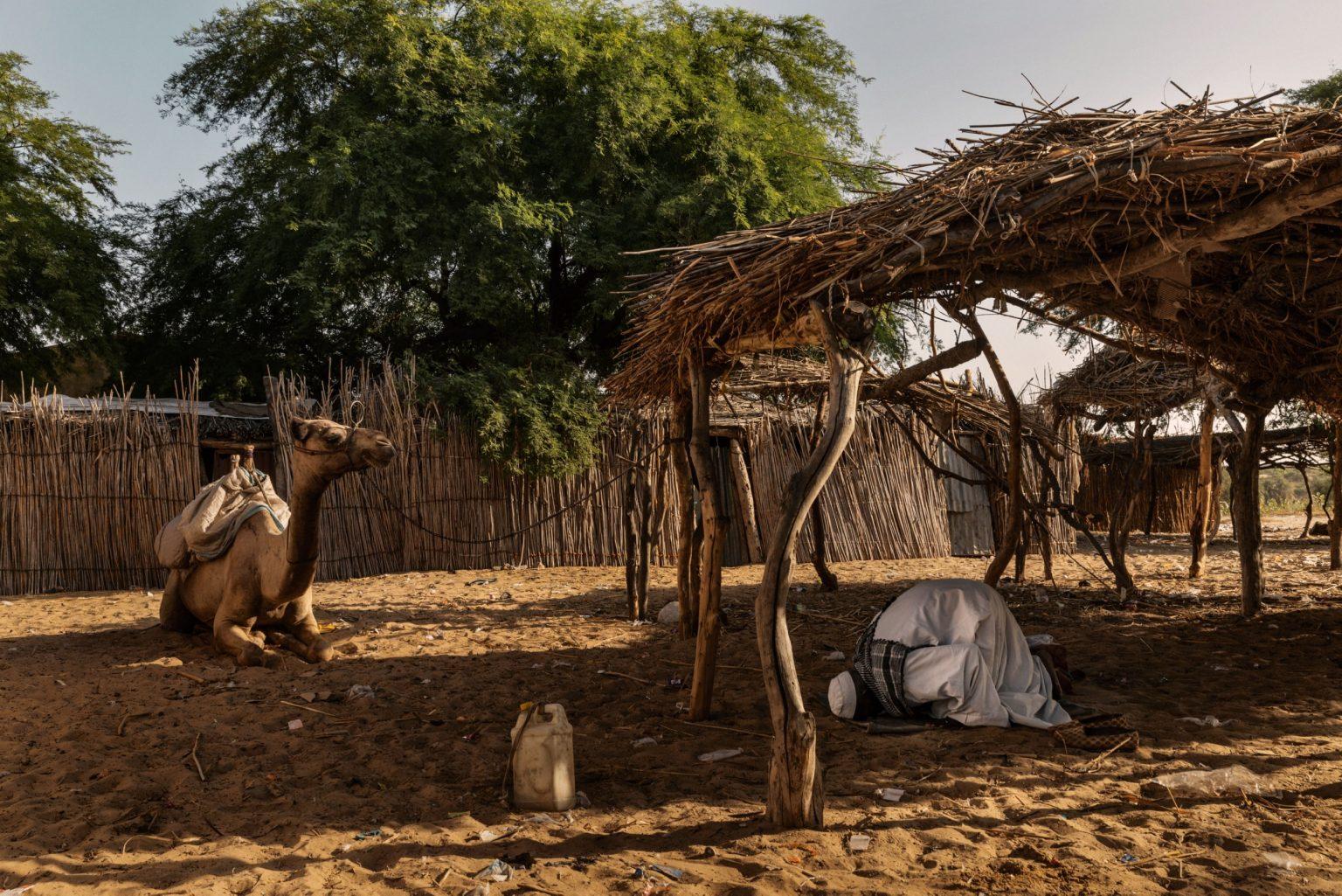 Africa, Chad, Melea, October 2018 - A Kanembou camel caravan driver prays the Maghrib, the sunset prayer. Lake Chad is the principal life source of the Sahel, a semiarid strip that spans the width of Africa and separates the Sahara, in the North, from the savanna, in the South. About a hundred million people live there. For  two decades, the entire region was struck by drought and famine. >< Africa, Ciad, Melea, Ottobre 2018 - Un conducente di una carovana (di cammelli) recita il Maghrib, la preghiera del tramonto. Il Lago Ciad è la principale risorsa vitale del Sahel, una striscia di terra semiarida, che copre l'Africa in larghezza, e separa il Sahara, a nord, e la savana, a sud. Circa cento milioni di persone vivono là. Per due decadi l'intera regione è stata colpita dalla carestia e dalla siccità.*** SPECIAL   FEE   APPLIES *** *** Local Caption *** 01362897