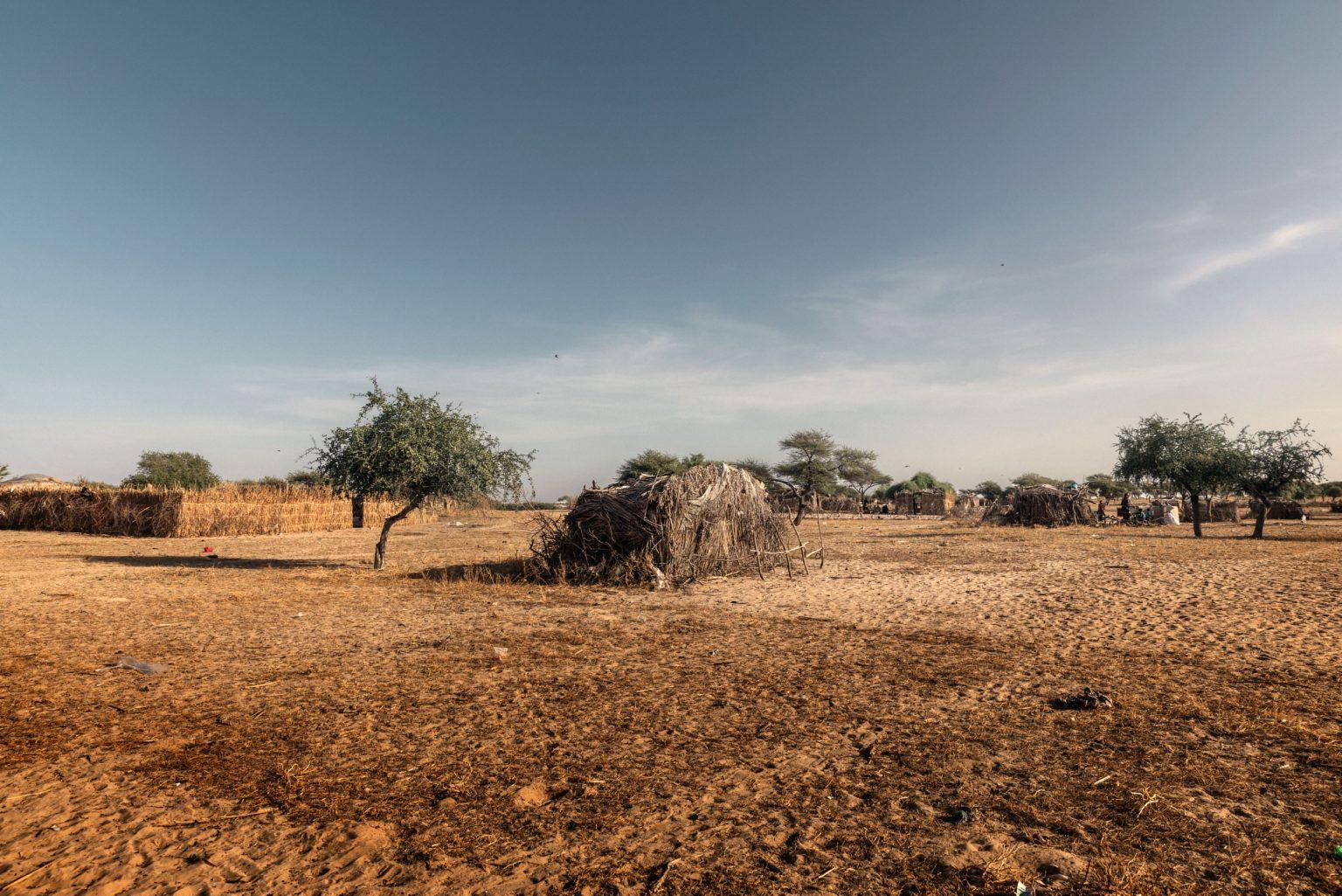 Africa, Chad, October 2018 - The island of Yiga, one of the places where the process of desertification is most evident. The refugees who live there are forced to drink the non-potable water of the lake. >< Africa, Ciad, Ottobre 2018 - L'isola di Yiga, uno dei posti dove il processo di desertificazione è più evidente. I rifugiati che vivono lì sono costretti a bere l'acqua non potabile del lago.*** SPECIAL   FEE   APPLIES *** *** Local Caption *** 01362895