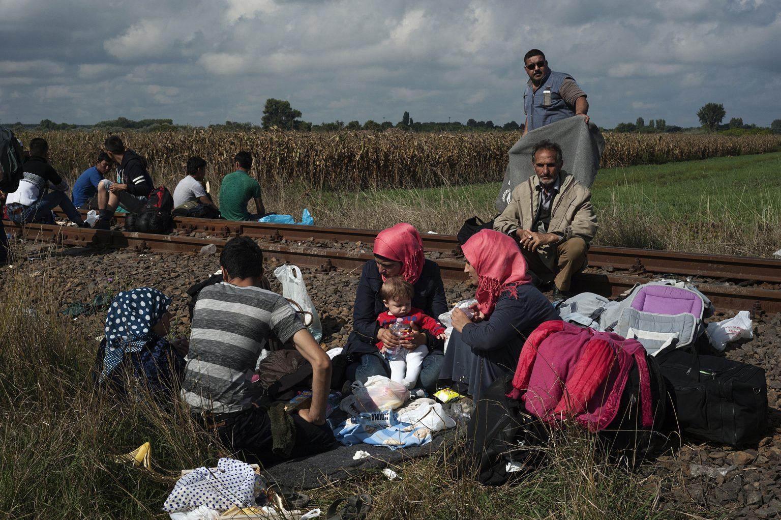 Roszke, Hungary,  September 12th 2015 - Syrian refugees just arriving in the country after crossing the border with Serbia.      ------         The Hungarian government stated within September 15th the border definitively will be closed, in order to stop the flux of refugees coming from Serbia. According to surveys, during the day of September the 12th more than 4,000 people crossed the border between the two countries.    ><      Röszke, Ungheria, 12 settembre 2015 - Profughi siriani appena arrivati in Ungheria dopo aver passato il confine con la Serbia.             -------------              Il governo ungherese ha dichiarato che entro il 15 settembre il confine sarà definitivamente chiuso per interrompere il flusso di immigrati provenienti dalla Serbia. Secondo le stime, solo nel giorno 12 di settembre più di 4.000 persone hanno attraversato il confine tra le due nazioni.   *** Local Caption *** 00557253