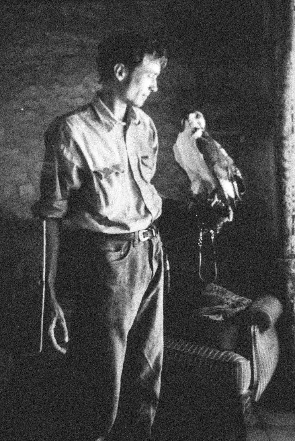 Archive image, Tristan with one of his first birds of prey © Family of Tristan Plot. >< Immagine d'archivio, Tristano con uno dei suoi primi rapaci © Famiglia di Tristano Plot.*** SPECIAL   FEE   APPLIES *** *** Local Caption *** 01489325