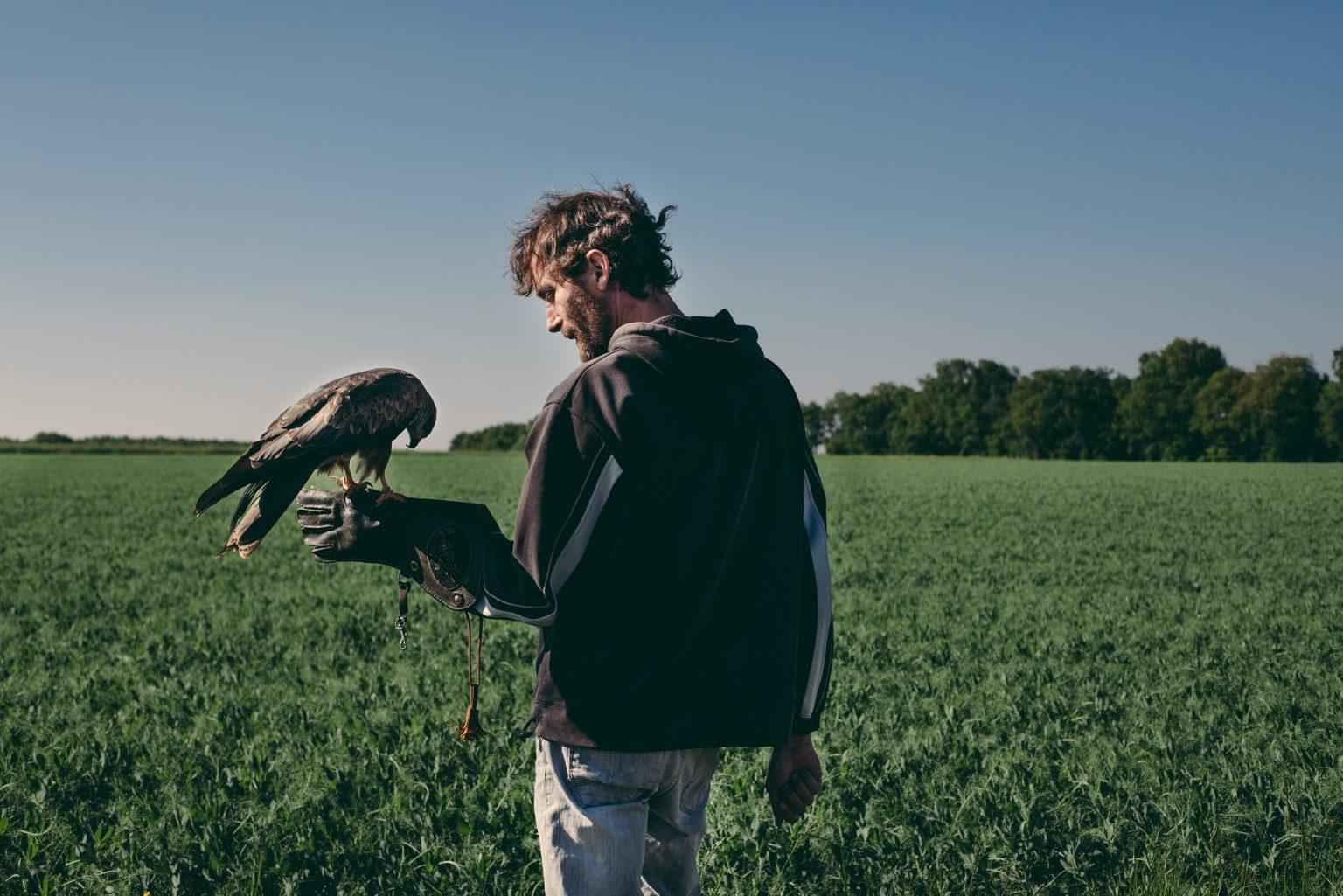 Bonneuil-Matours, France, May 2017 - La Maison Neuve. Tristan Plot with the black kite Elypse. ><  Bonneuil-Matours, Francia, maggio 2017 - La Maison Neuve. Tristan Plot con il nibbio nero Elypse.*** SPECIAL   FEE   APPLIES *** *** Local Caption *** 01489306