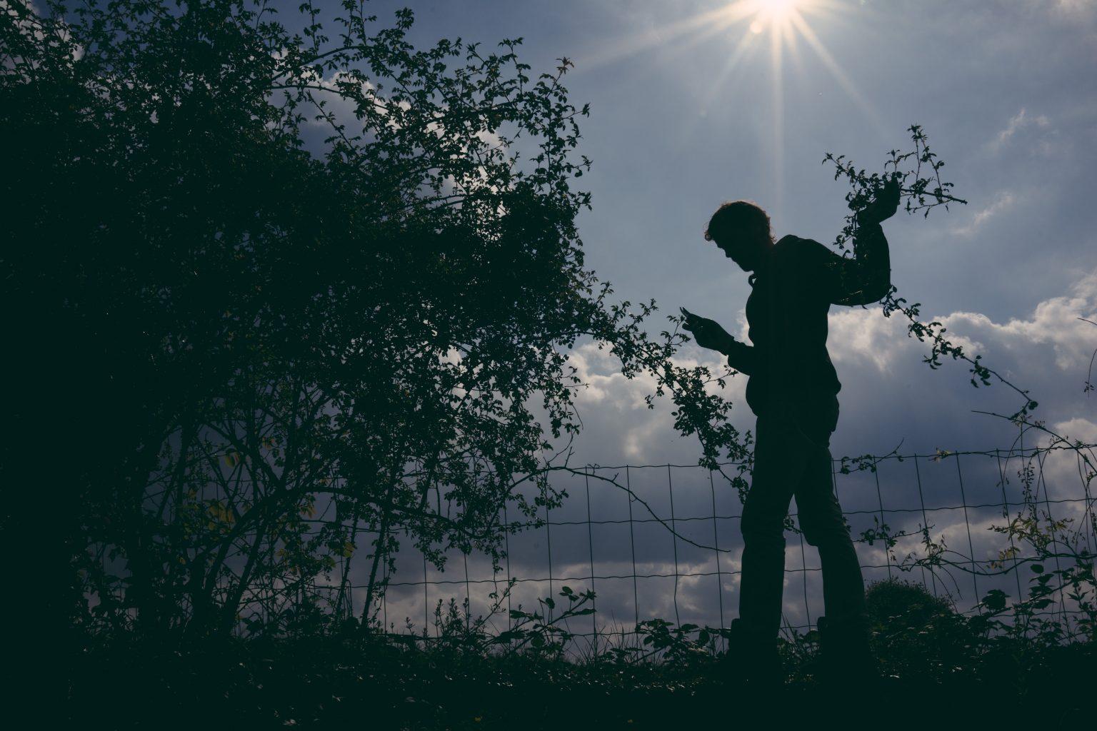 Bonneuil-Matours, France, May 2017 - La Maison Neuve. Tristan Plot does maintenance work on his flowering hedges, after the birds his second passion is plants and flowers and he takes care of many species in his garden. >< Bonneuil-Matours, maggio 2017 - Tristan Plot fa lavori di manutenzione alle sue siepi fiorite, dopo gli uccelli la sua seconda passione sono le piante e i fiori e si prende cura di molte specie nel suo giardino.*** SPECIAL   FEE   APPLIES ***
