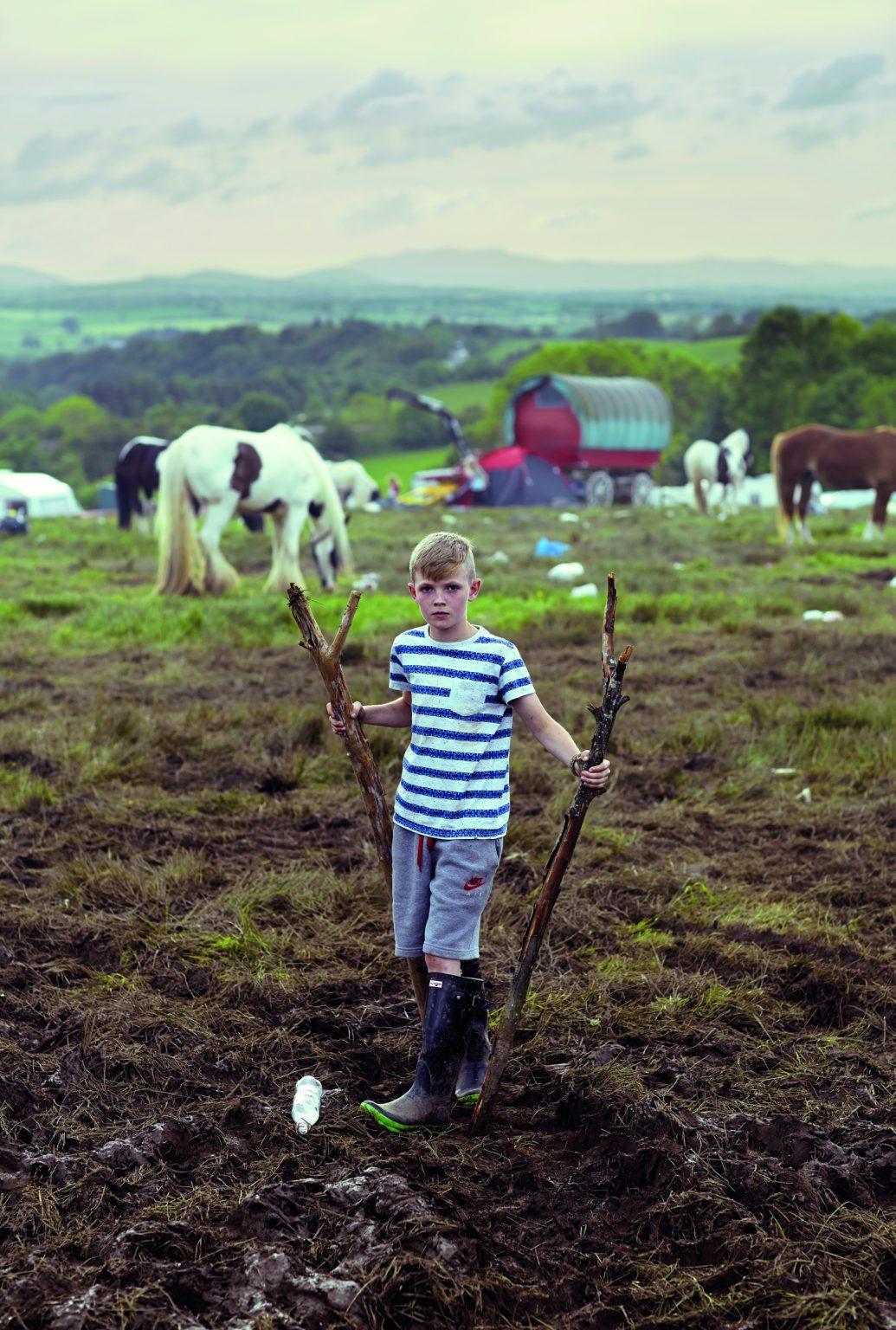 Appleby, United Kingdom, June 2014 - Appleby Horse Fair. Ken in a field. ><  Appleby, Regno Unito, giugno 2014 - Appleby Horse Fair. Ken in un campo. *** Local Caption ***