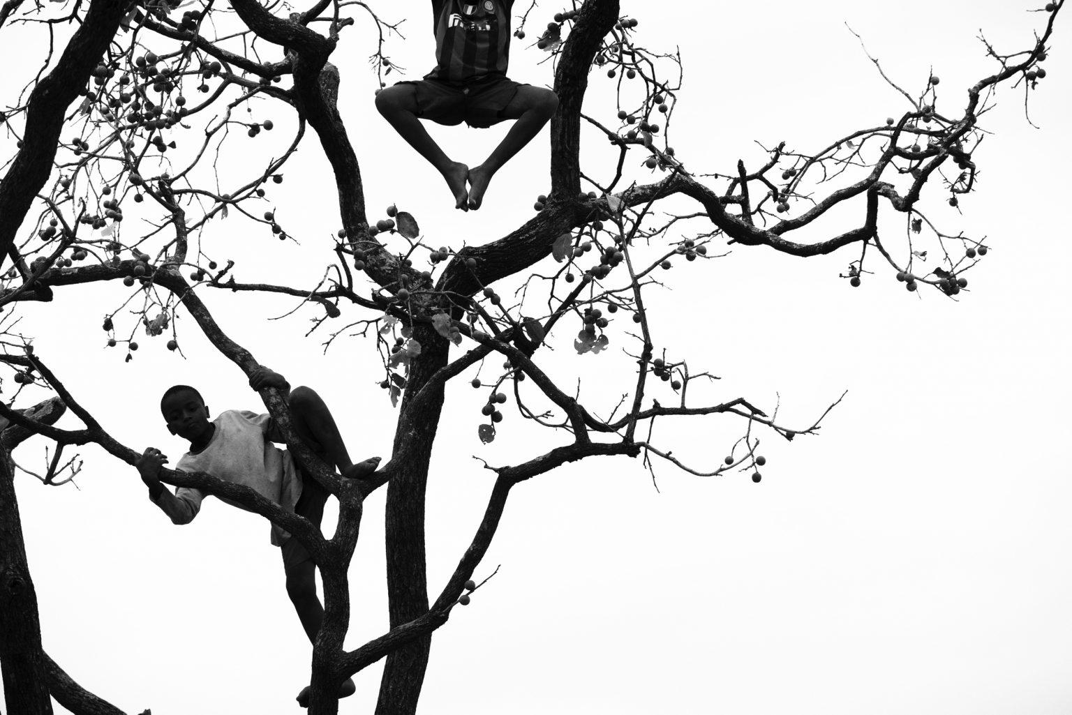 banbini raccolgono i frutti sugli alberi del centro di Mthunzi