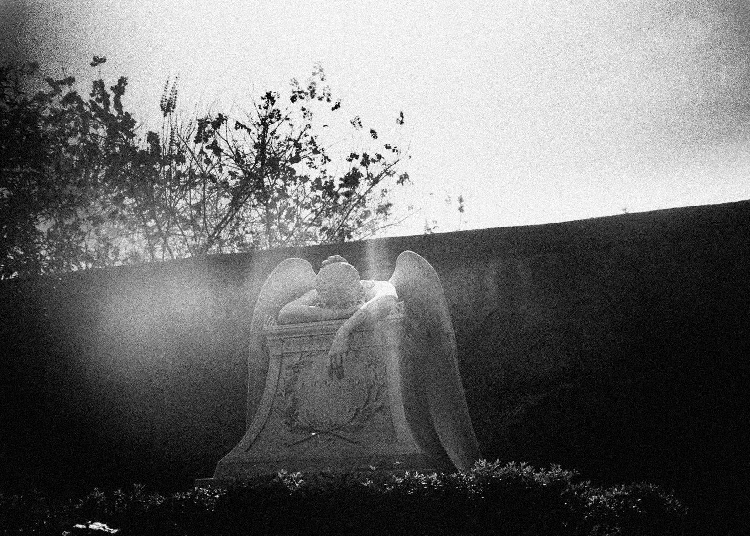 """Rome, 2020- """"Rome Diary"""" ( Rome 2007-2020)  is a long-term research that documents the city of Rome through stories of places and people. An investigation into different worlds, in a society where relationships, loneliness, abuse, love, nightlife, music and artists are explored, and finally the relationship between people and the city. A statue of an angel in a cemetary. .>< Rome, 2020 -Rome Diary Rome (2007-2020) è una ricerca a lungo termine che documenta la città di Roma attraverso storie di luoghi e  di persone. Un'indagine in mondi diversi, in una società in cui si esplorano le relazioni, la solitudine, gli abusi, l'amore, la vita notturna , la musica e gli artisti, ed infine il rapporto tra persone e città. Una statua di un angelo in un cimitero."""