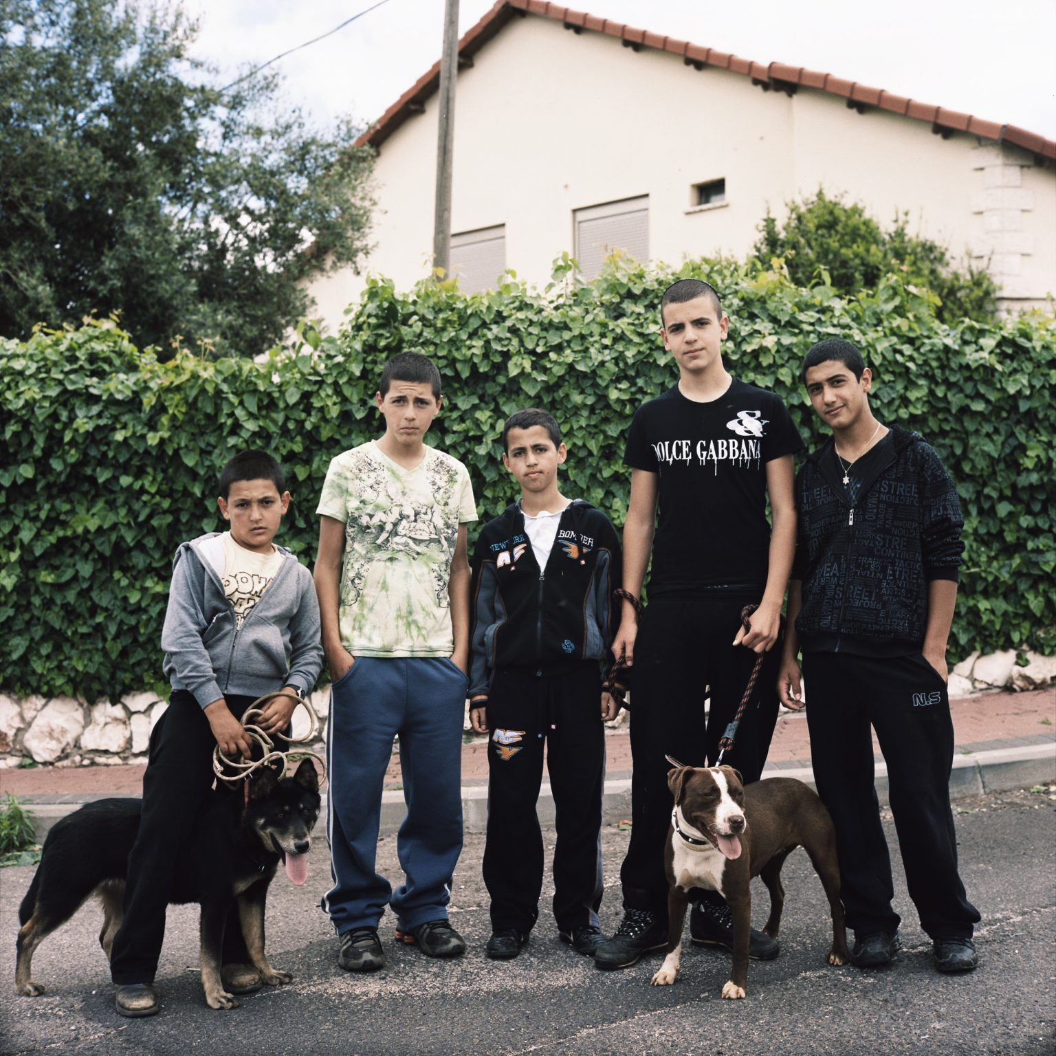 Avivim, Israel. Young residents of the moshav with their dogs.